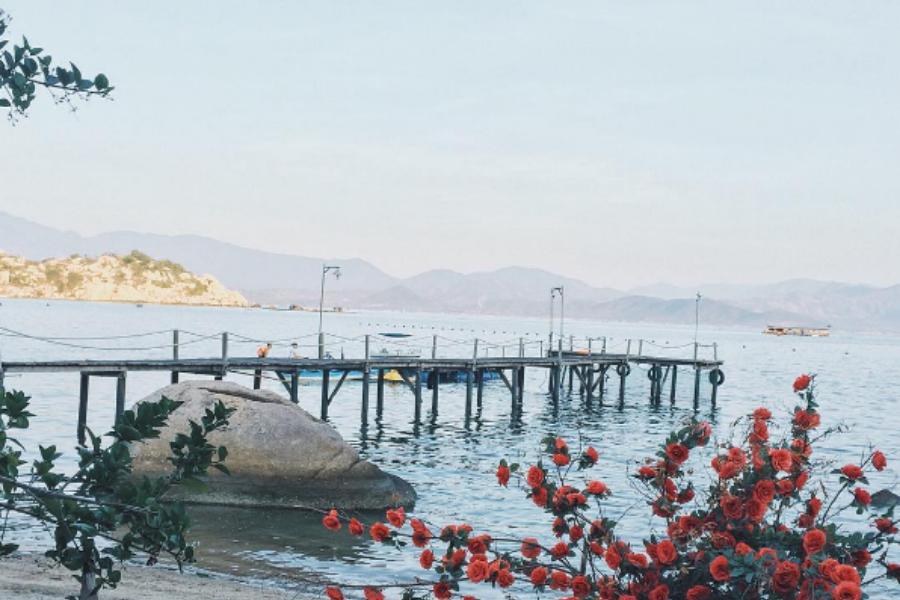 Sao Biển