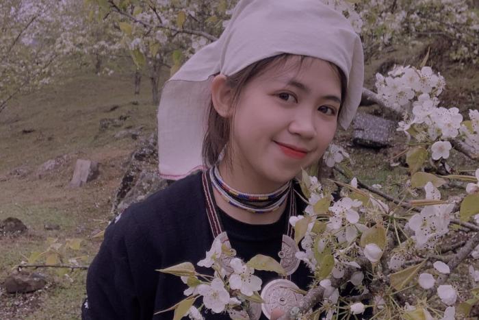Tuyên Quang mùa hoa lê