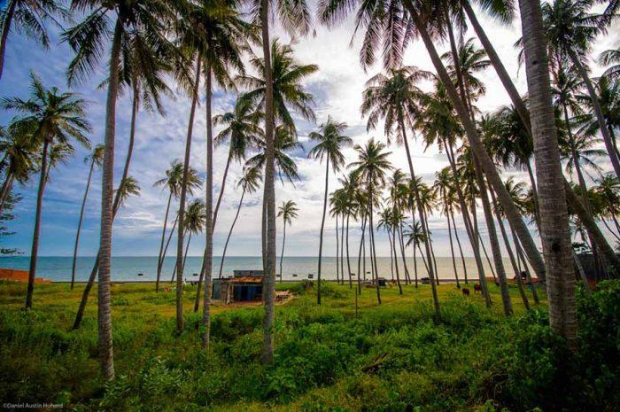 Bãi Rạng Mũi Né Phan Thiết