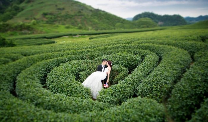 Đồi chè trái tim là địa điểm du lịch Mộc Châu của cặp đôi