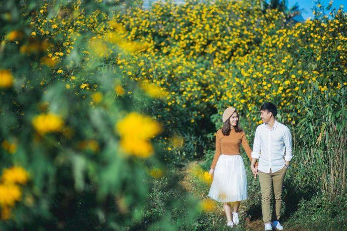 du lịch Kon Tum tháng 12 ngắm hoa dã quỳ