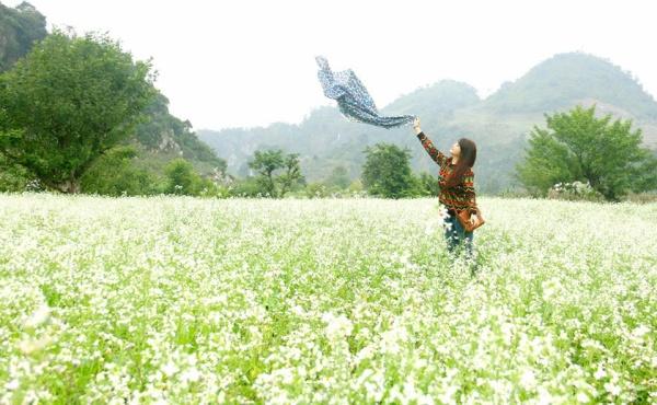 Bản Thung Cuông mùa cải trắng