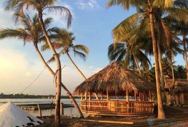 Bến tre- xứ sở dừa
