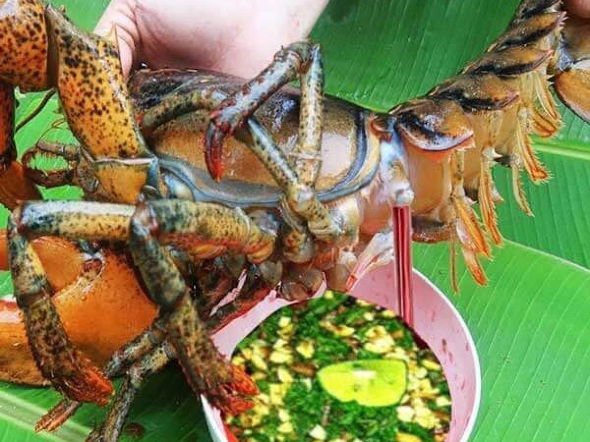 Đến Hồ Tràm ăn gì?