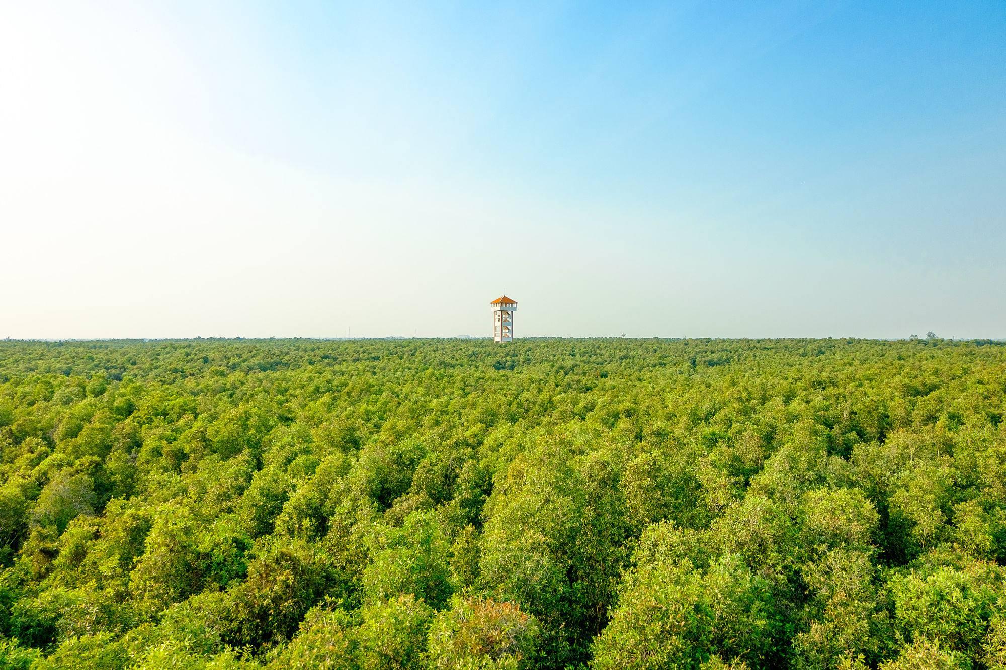 Tháp 38m tại làng nổi Tân Lập