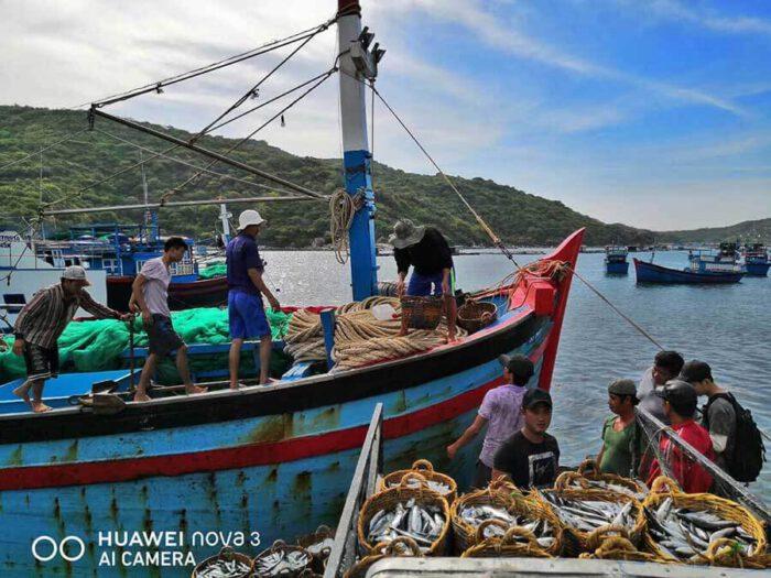 Bộ ảnh du lịch Việt Nam chụp từ Huawei