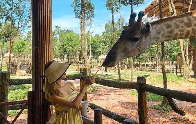 Vinpearl Safari Phú Quốc ở đâu?
