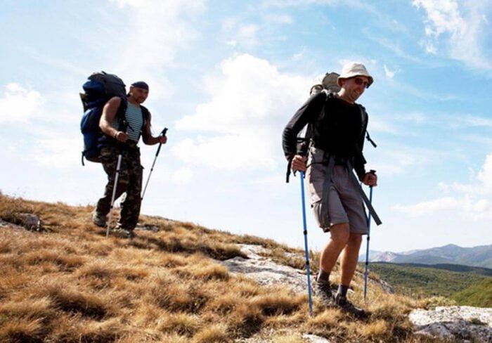 Gậy trekking
