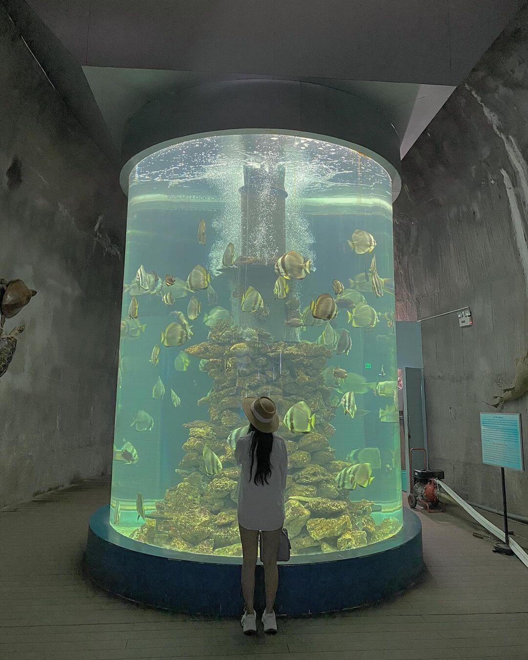 Lịch sử viện Hải dương học Nha Trang