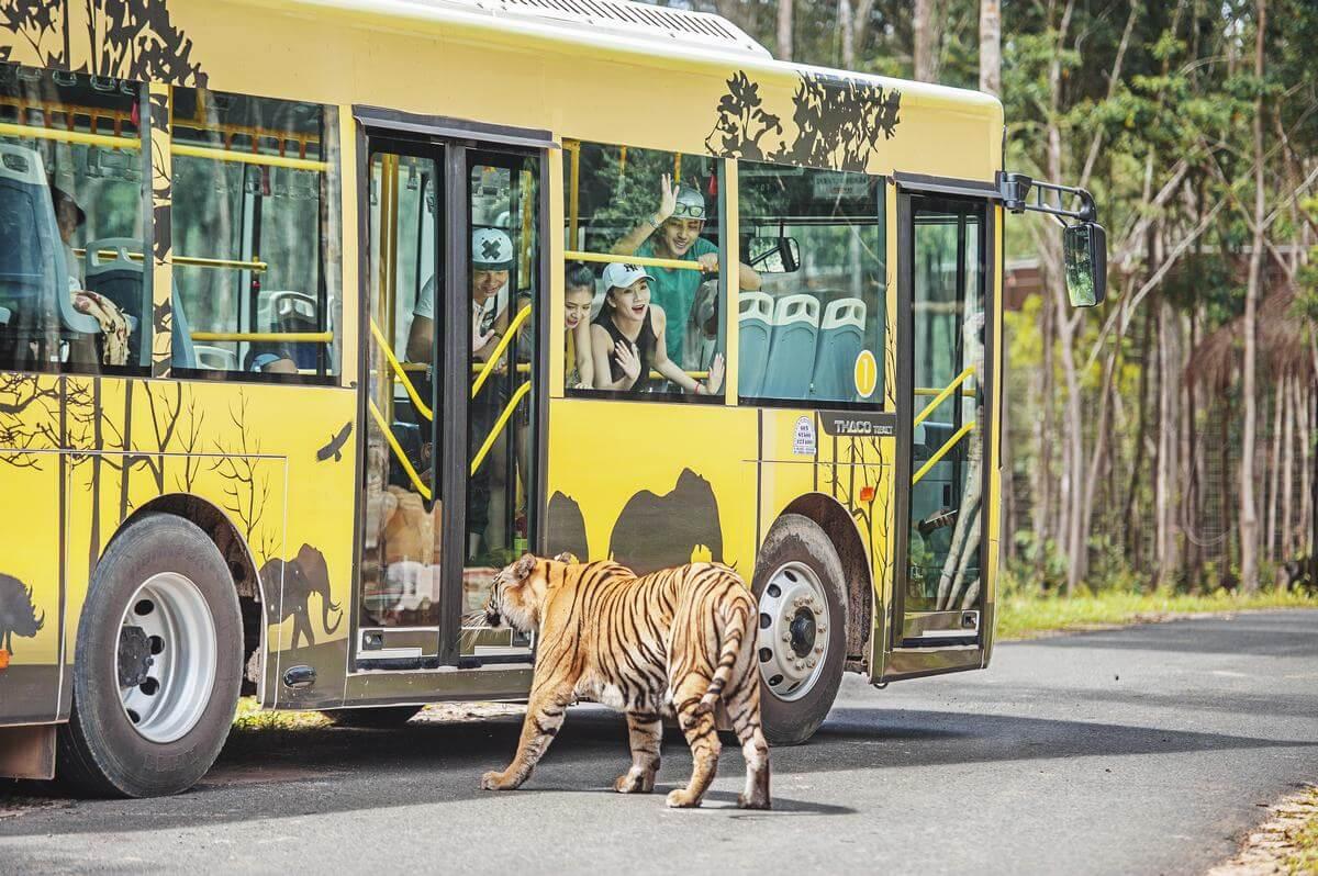 Khám phá Safari Phú Quốc