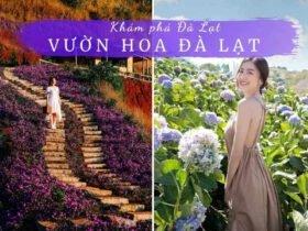 Cánh đồng hoa Đà Lạt, Vườn Hoa Đà Lạt