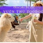 Vườn thú Zoodoo | Sở thú Zoodoo Đà Lạt
