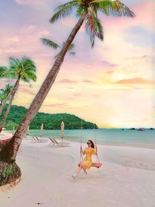Check-in cây dừa huyền thoại