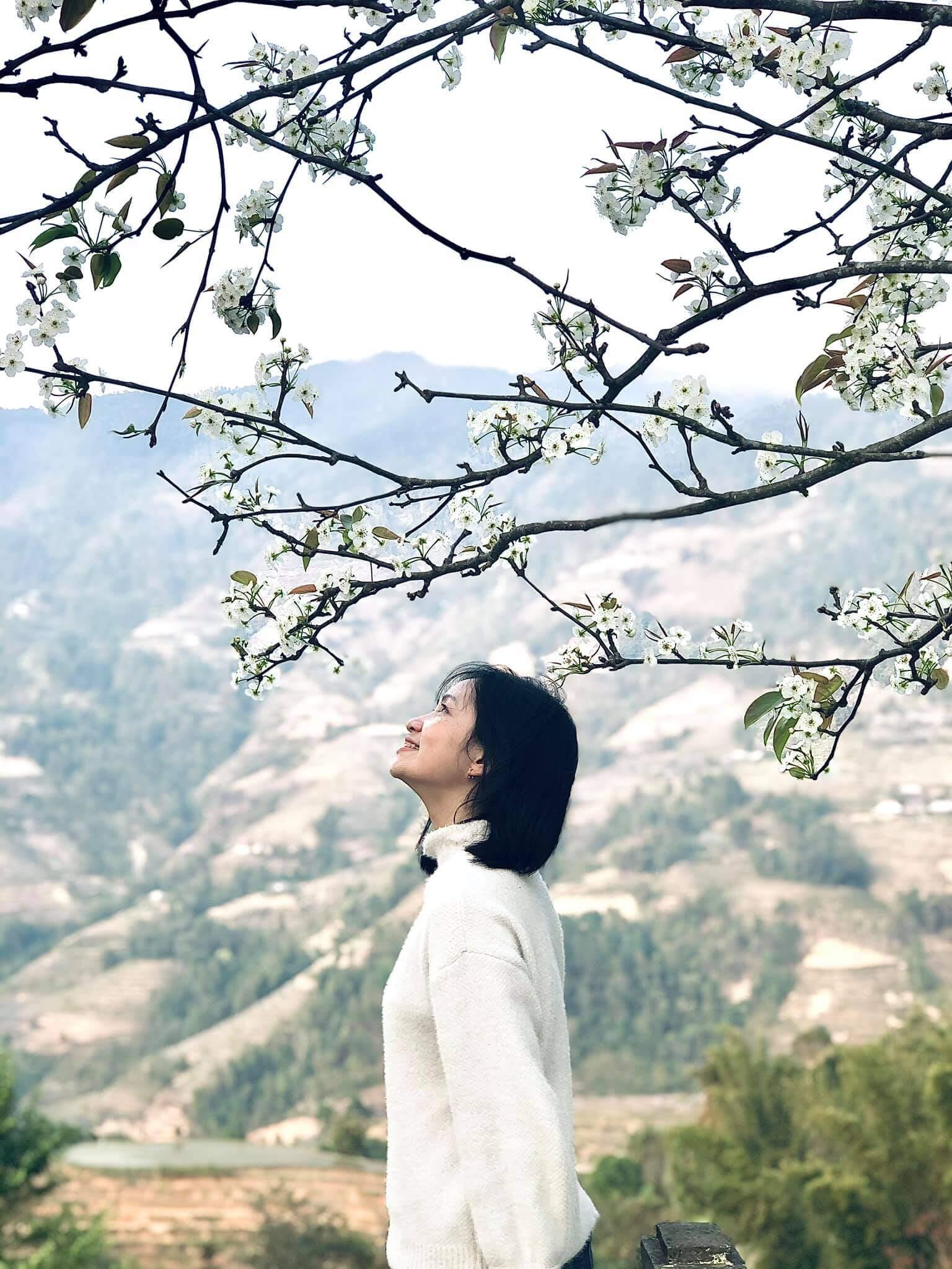 Hoàng Su Phì, Hà Giang