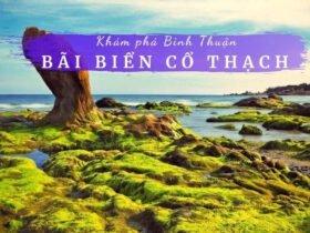 Review bãi biển Cổ Thạch Bình Thuận