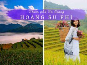 Review Hoàng Su Phì Hà Giang