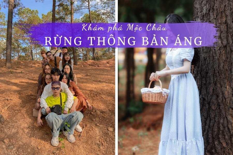 Review rừng thông Bản Áng Mộc Châu Sơn La